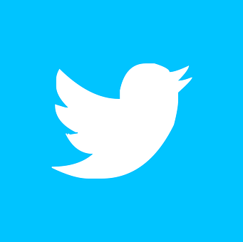 2 Tips to use Twitter for your Business