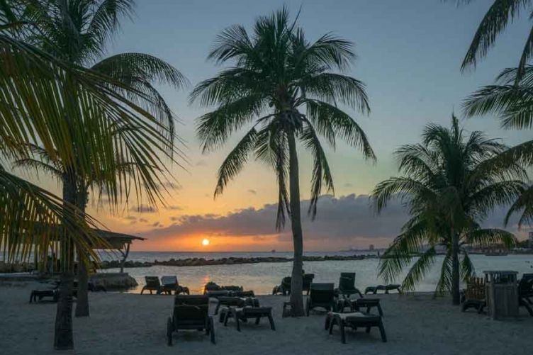 Caribbean Islands Woo