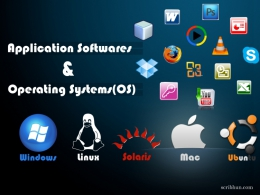 Operating System Software (OS) and Application System Software