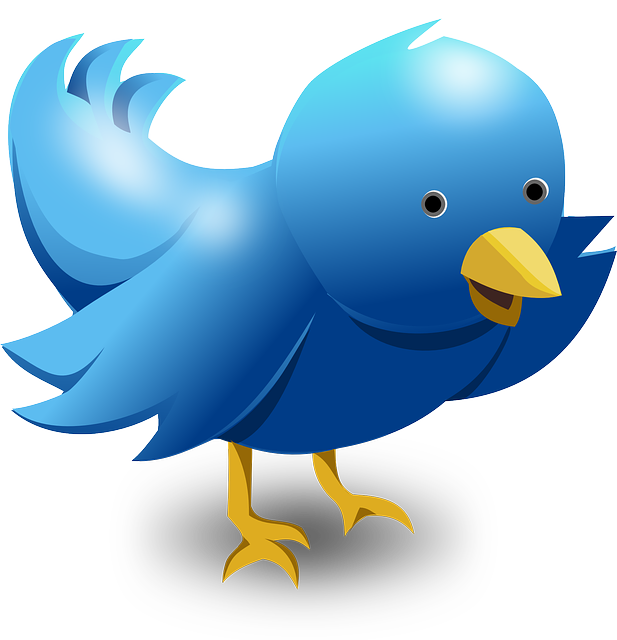 2 Benefits you can get on Twitter
